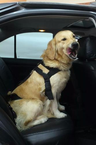 para perros para cinturon seguridad