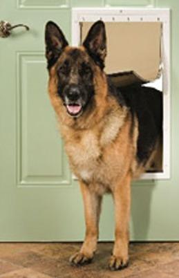para perros puerta
