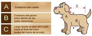 para perros ropa