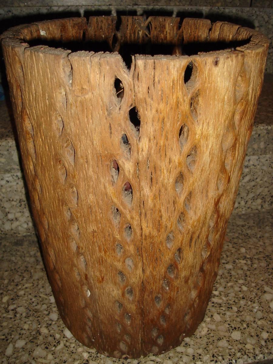 Paraguero De Cactus Cardon Secoideal Para Decorar Unico - Cactus-seco