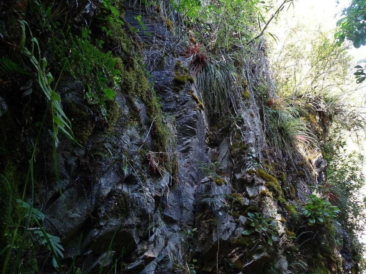parcela 2 ha, cascada, casa, bosques, río, vista lago