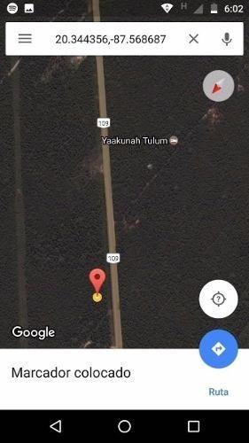 parcela de 25 has km 20 tulum cobá.