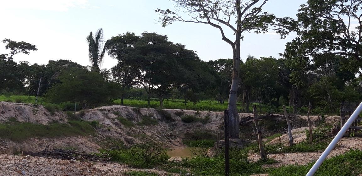 parcela de 3.3 hectareas