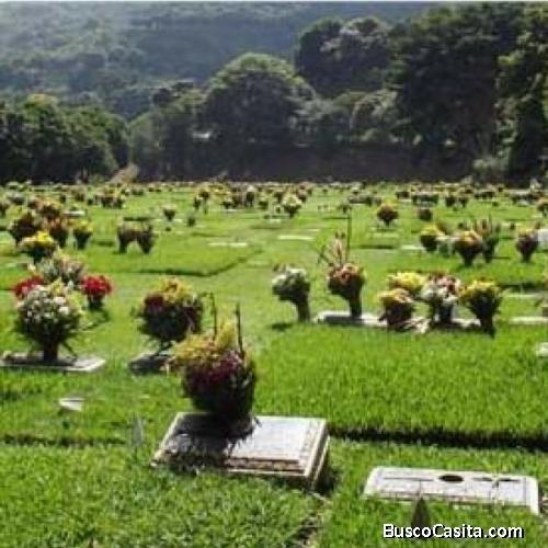 parcela de cementerio