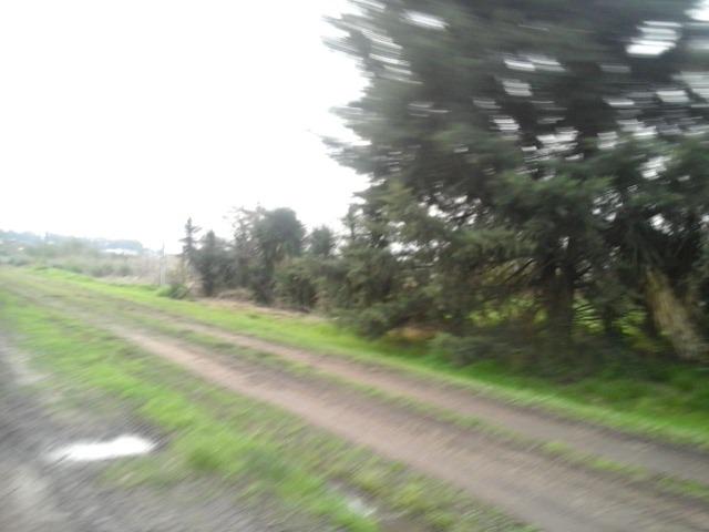 parcela de media hectárea en virrey del pino