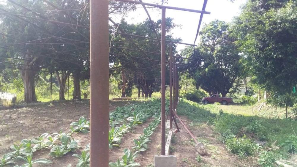 parcela de uso agricola-mini granja- en carabobo miranda