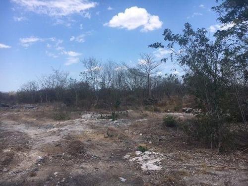 parcela ejidal en venta en san antonio siho, mpio. de halacho, estado de yucatan
