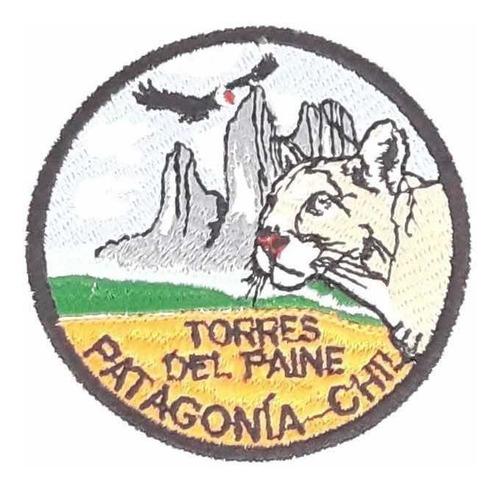 parche patagonia-chile torres del paine puma