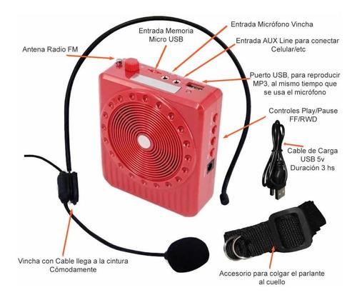 parlante amplificador microfono profesor docente sabattini