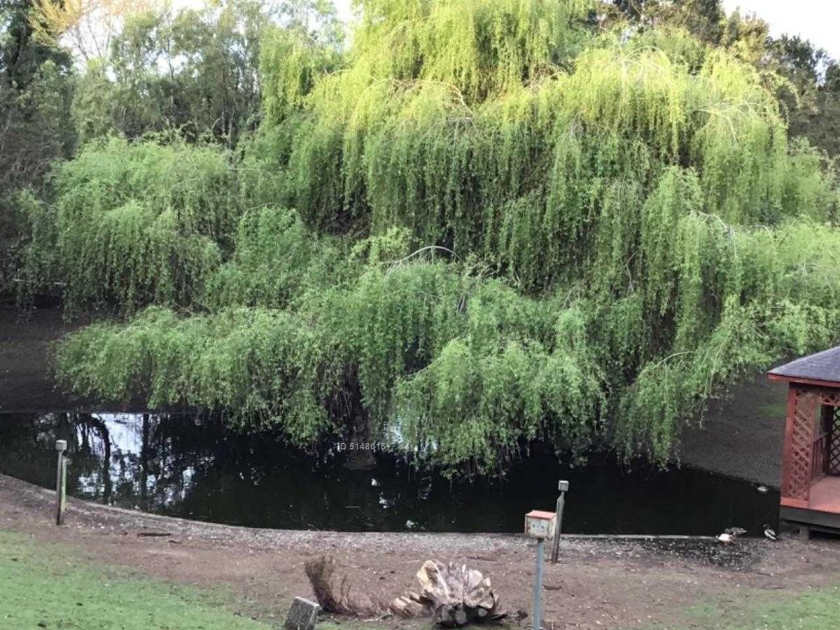 parque ivian