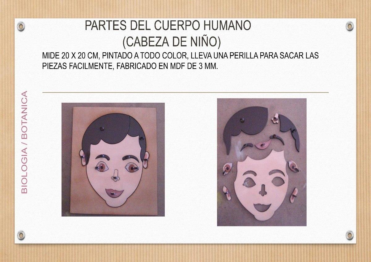 Partes Del Cuerpo Humano Montessori - $ 480.00 en Mercado Libre