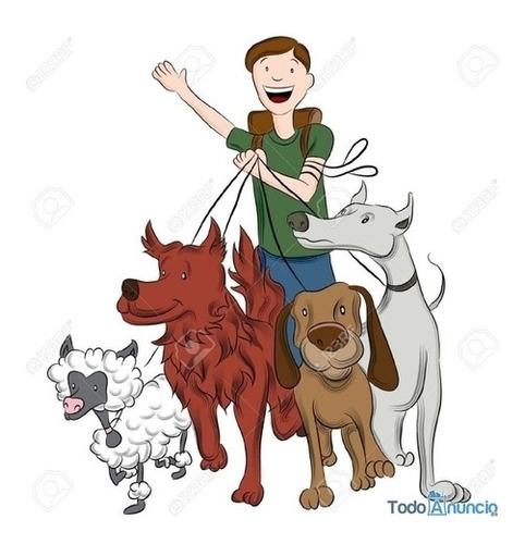 paseador perros en belgrano