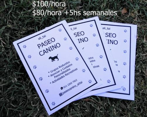 paseadora de perros - hospedaje villa devoto/del parque