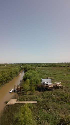 paseo delta / tigre - lancha privada - experiencia a medida