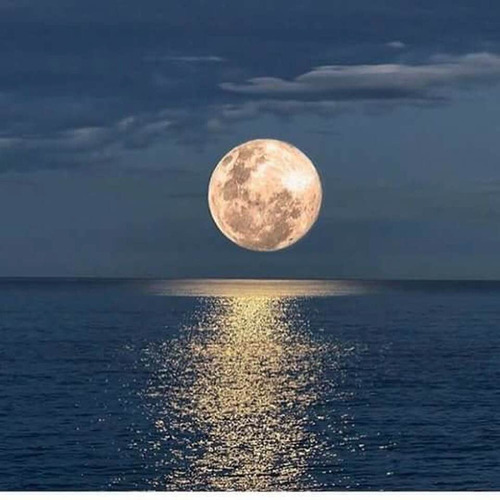 paseo romántico velero cenas noche intima parejas privacidad