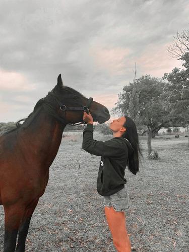 paseos a caballo aprende a montar y pasa un día de campo