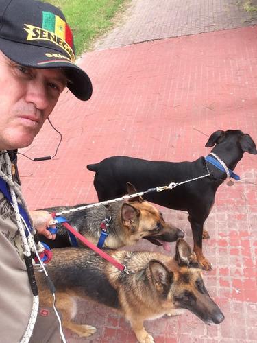 paseos caninos leo  zona unión y aledañas
