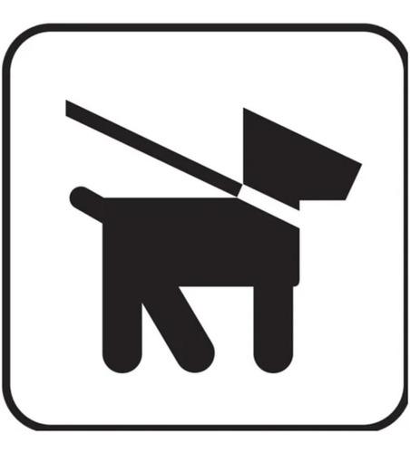 paseos de perro en ñuñoa y providencia