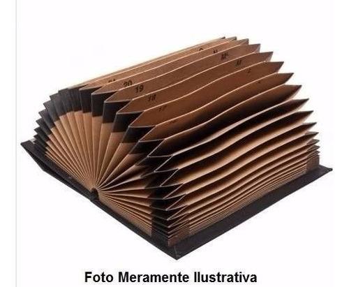 pasta sanfonada duplicata meio of a/z -1 a 31 divisorias