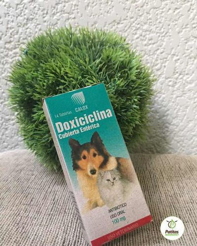 pastilla de frenos marca doxiciclina .