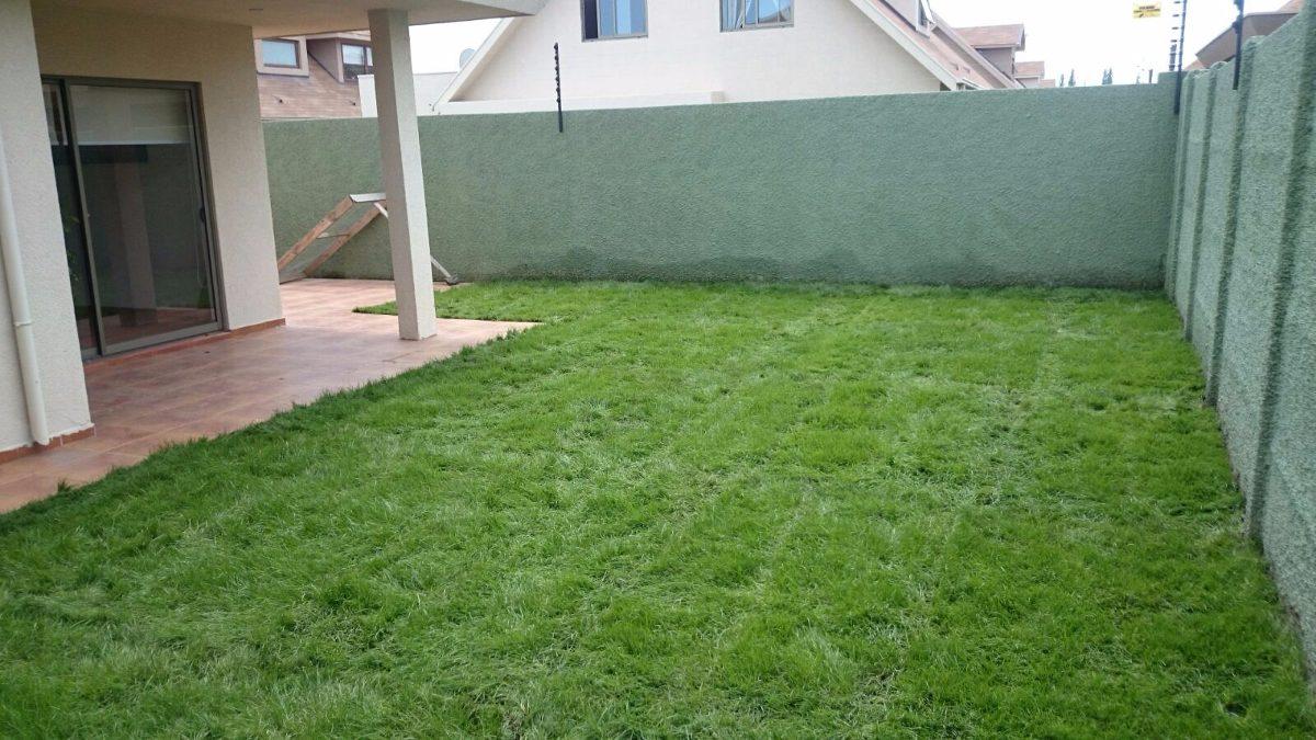 Pasto alfombra palmetas pastelones cesped pasto en for Cesped en rollo