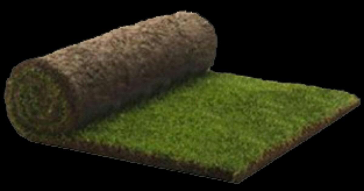 Pasto en rollo tipo alfombra en mercado libre for Tipos de alfombras
