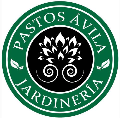 pastos avila & jardinería