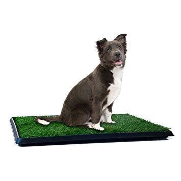 pata del perrito orinal baño de cubierta para los animales