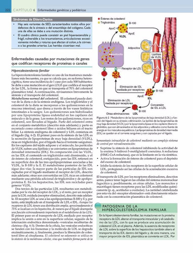 patología humana de robbins 9na edición - pdf hd