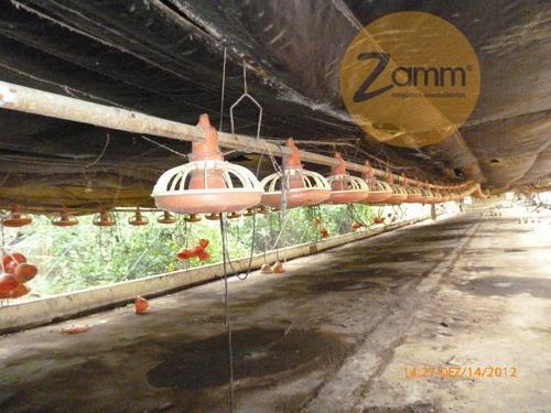 pavilhão para granja - bairro mostarda - monte alegre do sul - codigo: ga0008 - ga0008