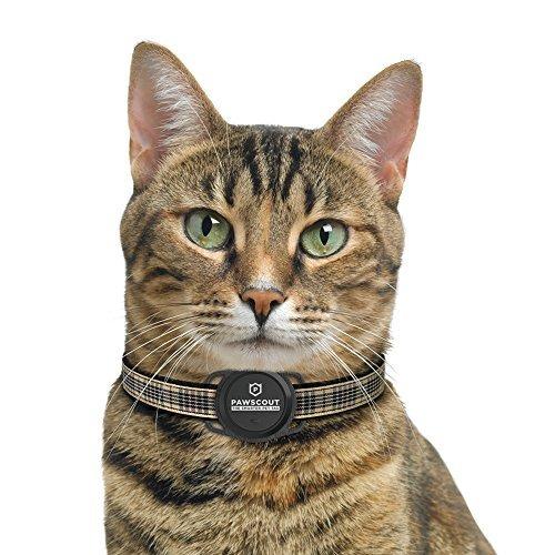 pawscout smarter pet tag comunidad pet tracker bluetooth no