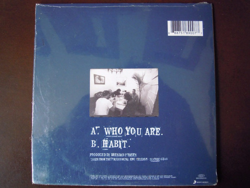 pearl jam ep vinyl who are you sellado 1996
