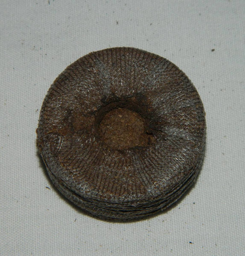 peat pellets jiffy deshidratados de turba comprimida.