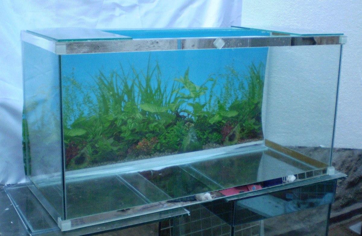 Pecera 125 litros 100cm x 50cm alto x 25 cm con garantia for Todo para acuarios