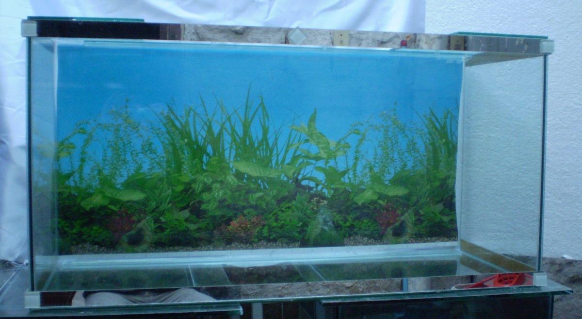 Pecera 125 litros 100cm x 50cm alto x 25 cm con garantia for Peceras para tortugas