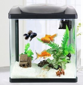 pecera acuario 28,38, 48 lts completas con filtro luz led