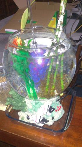 pecera de  vidrio redonda con accesorios e iluminacion