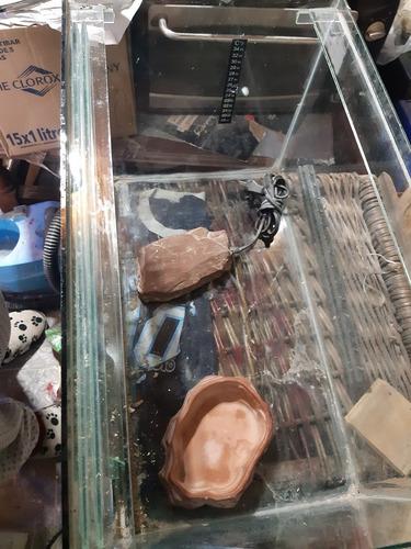 pecera p/gueko, serpient. compl. c/fuente y piedra calefact.