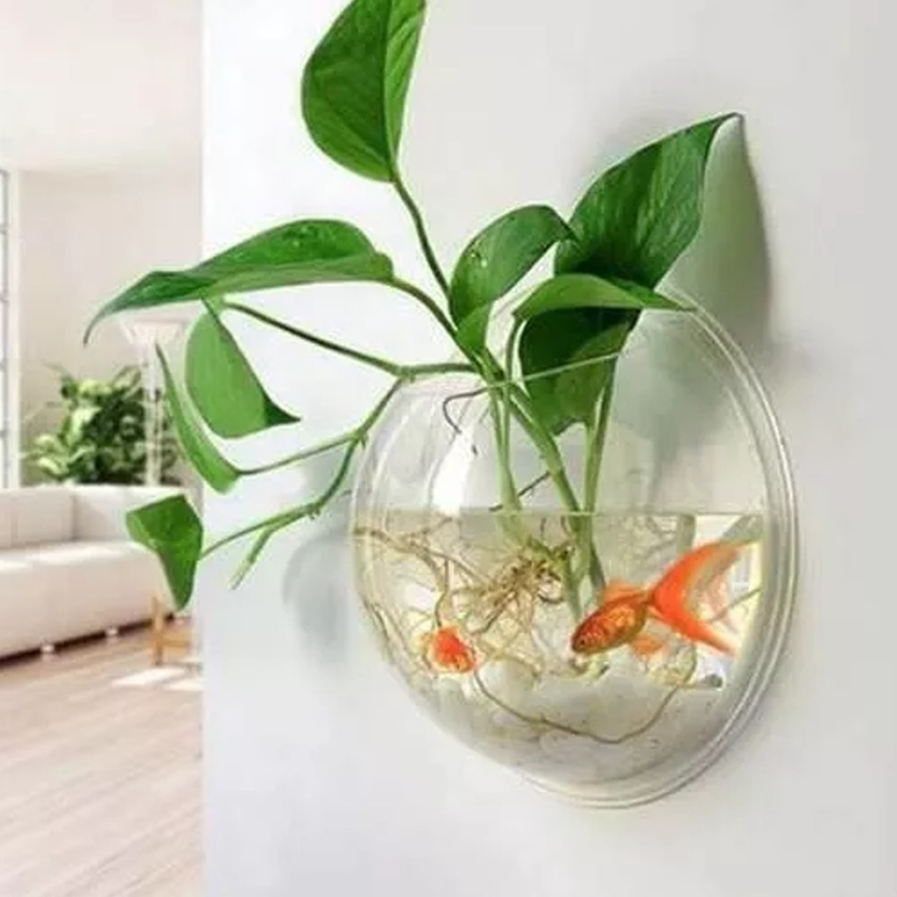 Pecera terrario o florero acrilico burbuja para pared - Pecera de pared ...