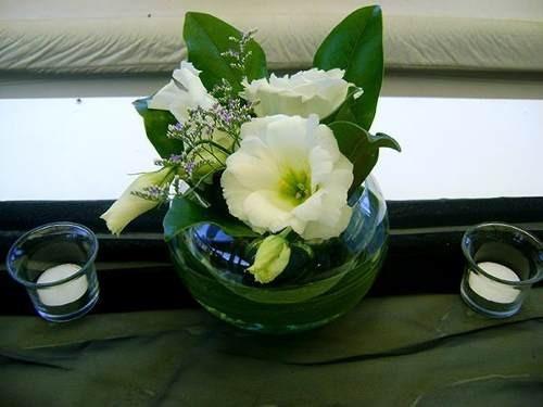 peceras grandeschicas candelabros florerospuffalfombra - Peceras Grandes