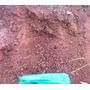 Arcilla Roja Para Tu Acuario Plantado Componente Excelente