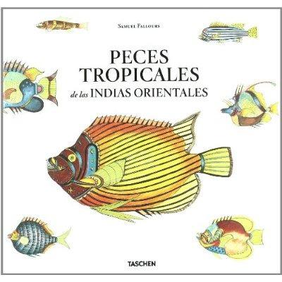peces tropicales indias envío gratis