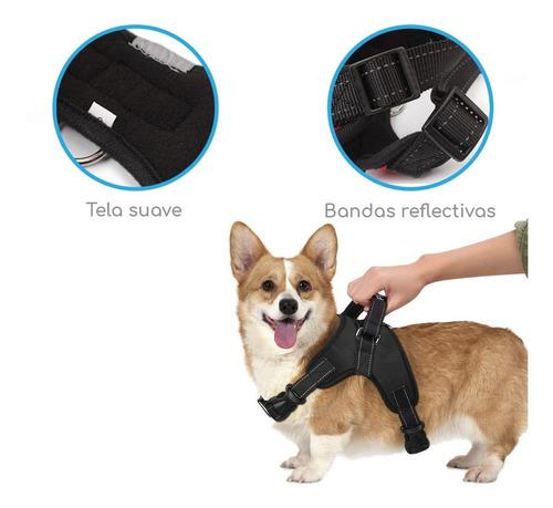 pechera arnés nylon p/ perro mascota deportiva o paseo