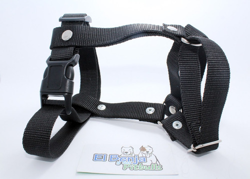 pechera para cachorro sin correa cinturon 1 pulgada