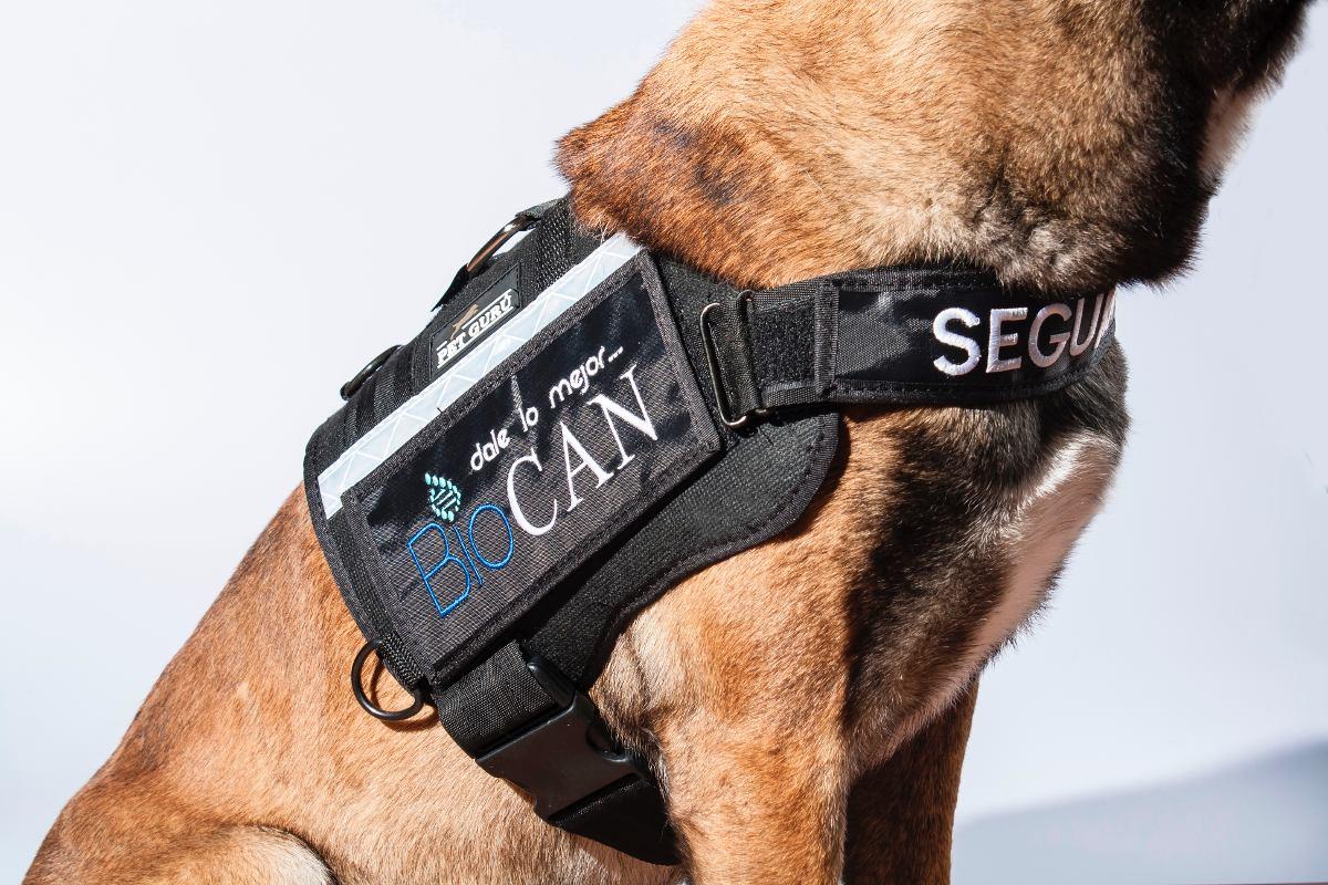 f1b81ebba043 pechera para perro táctica hecho en mexico paseo petguru. Cargando zoom.