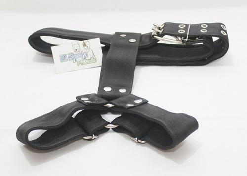 pechera para pitbull cinturon de seguridad negra