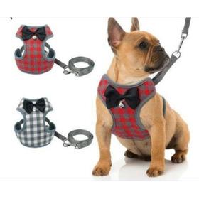 Pechero Collar Para Perro Y Gato - Unidad a $31999