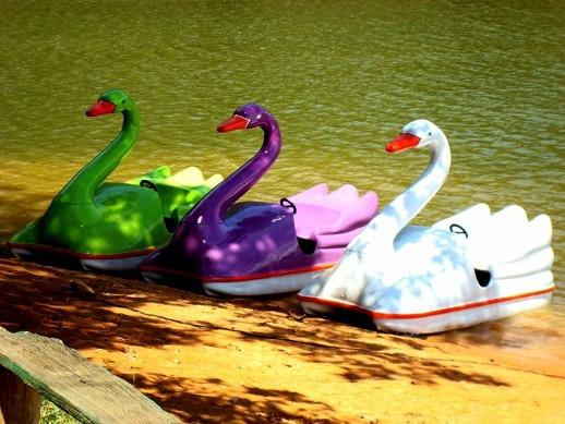 pedalinhos e caiaques canoas - promoção imperdível!!!