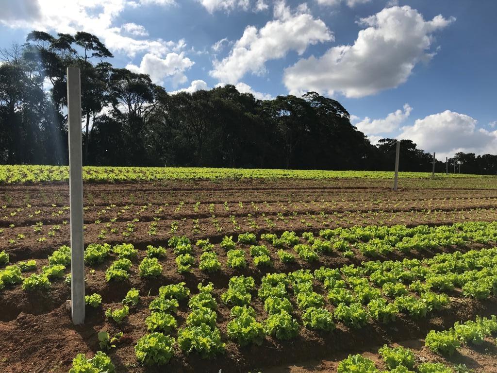 pegamos seu veiculo terrenos de 600 m2 com area verde j