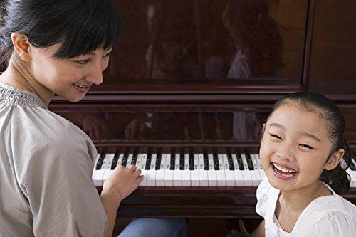 pegatinas de piano para teclas blancas y negras w notas comp